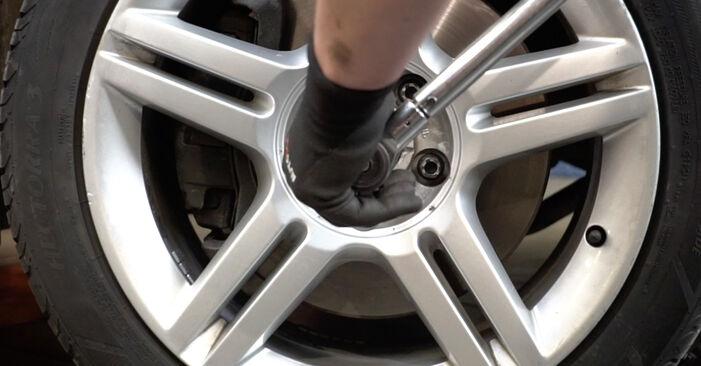 Schritt-für-Schritt-Anleitung zum selbstständigen Wechsel von Audi A4 B7 Limousine 2007 2.0 Radlager