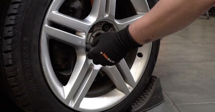 Zweckdienliche Tipps zum Austausch von Radlager beim AUDI A4 Limousine (8EC, B7) 2.0 TDI 2008