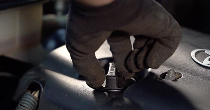 Toyota RAV4 III 2.0 4WD (ACA30_) 2007 Filtro Olio sostituzione: manuali dell'autofficina