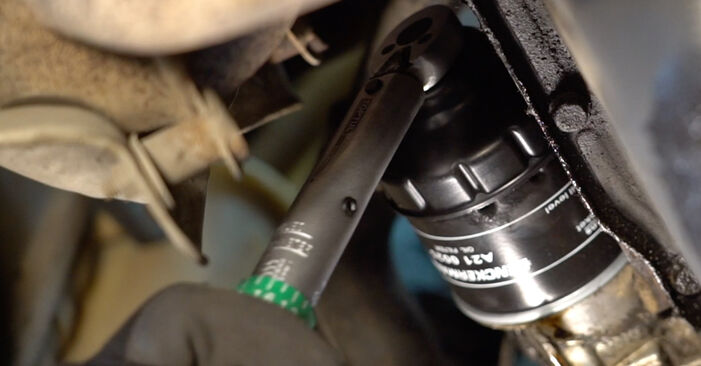 Step-by-step recommendations for DIY replacement Fiat Punto 188 2012 1.9 JTD Oil Filter
