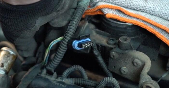 Fiat Punto 188 1.2 16V 80 2001 Spark Plug replacement: free workshop manuals