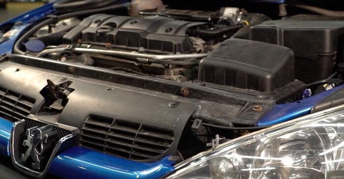 Hoe lang duurt Bougies vervangen Peugeot 206 cc 2d 2006 – informatieve pdf-handleiding
