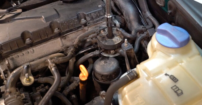 Schritt-für-Schritt-Anleitung zum selbstständigen Wechsel von Passat 3B6 1997 1.6 Kraftstofffilter