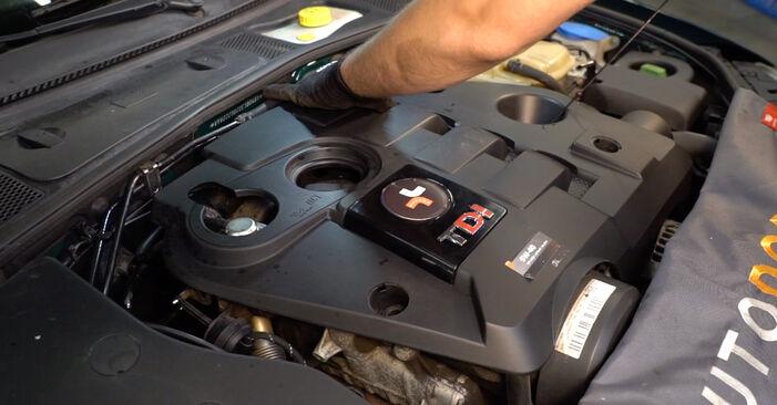 Wie Kraftstofffilter Passat 3B6 1.9 TDI 1996 tauschen - Kostenlose PDF- und Videoanleitungen