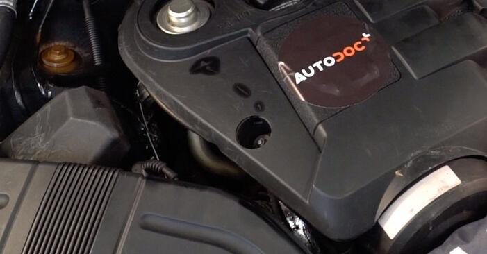 Смяна на Audi A4 B6 Avant 2.5 TDI quattro 2002 Маслен филтър: безплатни наръчници за ремонт