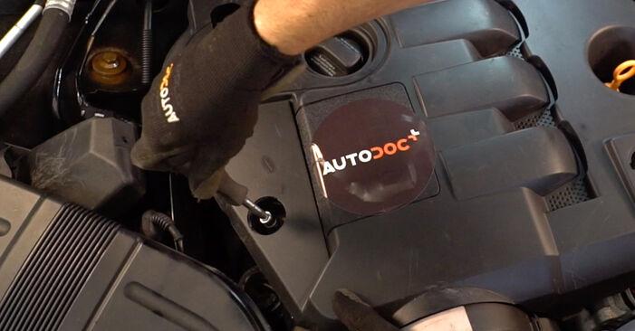 Самостоятелна смяна на AUDI A4 Avant (8E5, B6) 1.9 TDI quattro 2004 Маслен филтър - онлайн урок