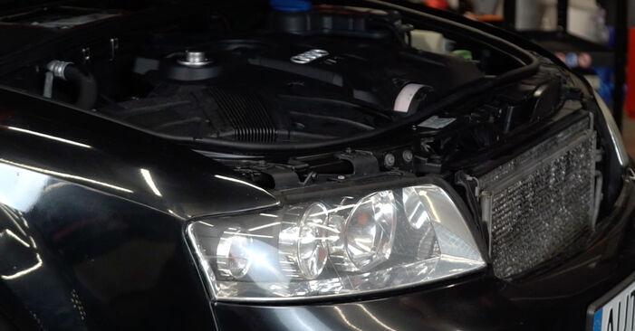 Wie Kraftstofffilter Audi A4 B6 Avant 1.9 TDI 2000 tauschen - Kostenlose PDF- und Videoanleitungen