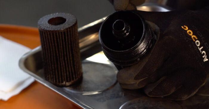 Recomendaciones paso a paso para la sustitución por su cuenta Renault Clio 2 2011 1.4 Filtro de Aceite