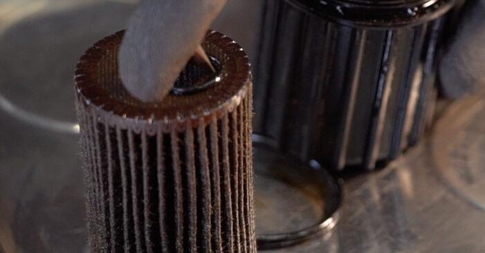 Cambio Filtro de Aceite en RENAULT CLIO II (BB0/1/2_, CB0/1/2_) 1.5 dCi 2012 ya no es un problema con nuestro tutorial paso a paso