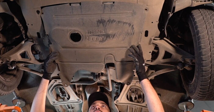 Kako težko to naredite sami: Oljni filter zamenjava na Renault Clio 2 1.6 16V 2004 - prenesite slikovni vodnik