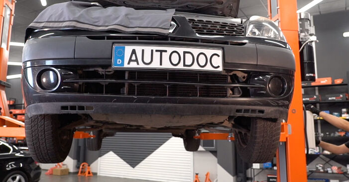 Kako dolgo traja menjava: Oljni filter na Renault Clio 2 2006 - informativni PDF priročnik