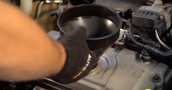 Kuinka vaihtaa Öljynsuodatin CITROËN C3 I Hatchback (FC_, FN_) 2007 -autoon: lataa PDF-oppaat ja video-ohjeet
