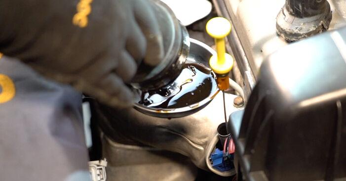 Kuinka poistaa CITROËN C3 1.4 16V HDi 2006 -auton Öljynsuodatin - helposti seurattavat online-ohjeet