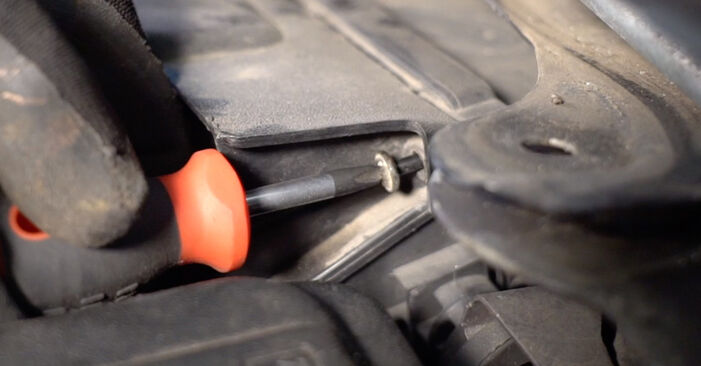 Schritt-für-Schritt-Anleitung zum selbstständigen Wechsel von Renault Scenic 2 2008 2.0 Luftfilter