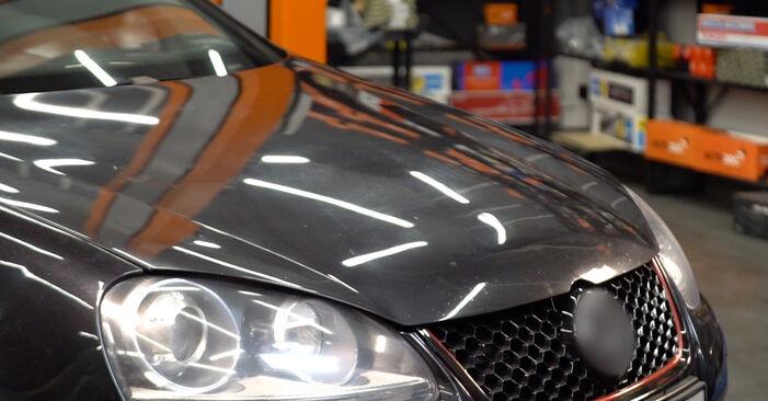 Zweckdienliche Tipps zum Austausch von Luftfilter beim VW Golf V Schrägheck (1K1) 2.0 GTI 2003