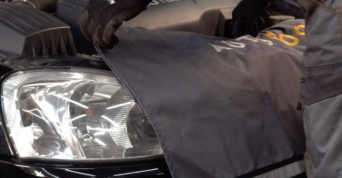 Come sostituire OPEL Corsa C Hatchback (X01) 1.2 (F08, F68) 2001 Filtro Aria - manuali passo passo e video guide