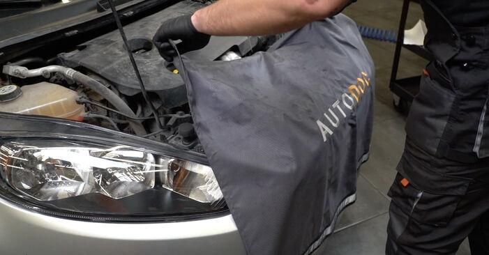 Fiesta Mk6 Hatchback (JA8, JR8) 1.4 LPG 2019 Air Filter DIY replacement workshop manual