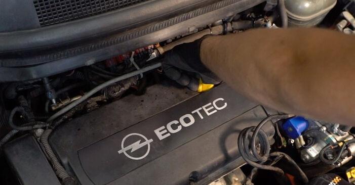 Opel Zafira B 1.8 (M75) 2007 Alyvos filtras keitimas: nemokamos remonto instrukcijos