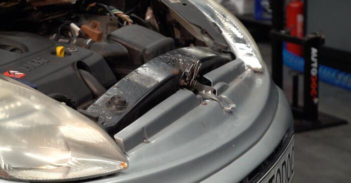 Wie kompliziert ist es, selbst zu reparieren: Ölfilter am Citroen Xsara Picasso 2.0 HDi 2003 ersetzen – Laden Sie sich illustrierte Wegleitungen herunter