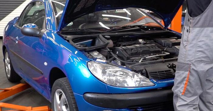 Jak vyměnit Vzduchovy filtr na Peugeot 206 cc 2d 1998 - bezplatné PDF a video návody