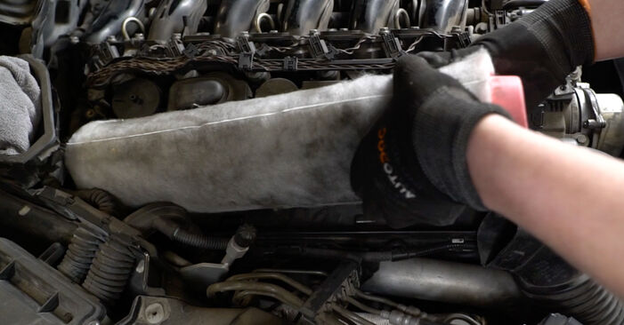 Zweckdienliche Tipps zum Austausch von Luftfilter beim BMW 5 Limousine (E60) 520d 2.0 2005