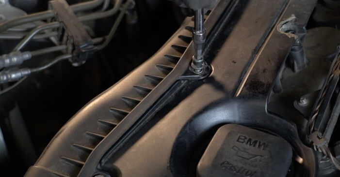 Luftfilter beim BMW 5 SERIES 530d 3.0 2008 selber erneuern - DIY-Manual