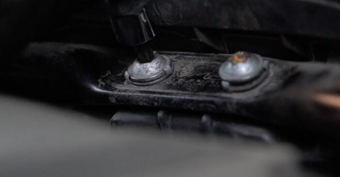Steg-för-steg-rekommendationer för att byta BMW E60 2004 525d 3.0 Luftfilter på egen hand