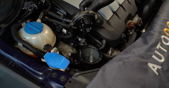 Passat Variant (3C5) 2.0 TDI 4motion 2010 2.0 TDI 16V Kraftstofffilter - Handbuch zum Wechsel und der Reparatur eigenständig