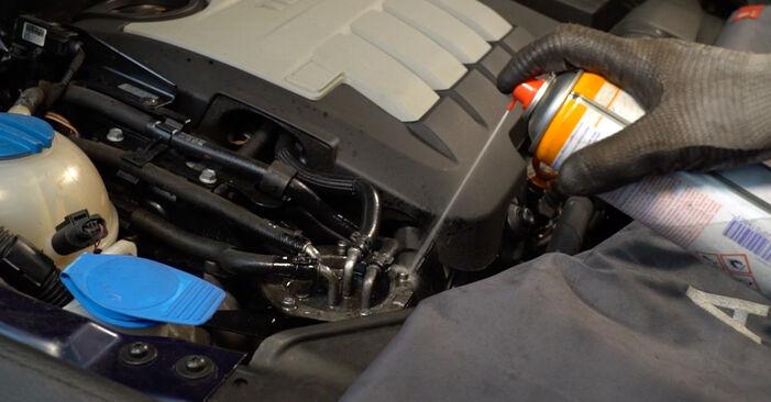Passat 3C 2.0 TDI 16V 2007 Kraftstofffilter austauschen: Unentgeltliche Reparatur-Tutorials