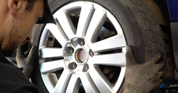 Tausch Tutorial Federn am VW Passat Variant (3C5) 2005 wechselt - Tipps und Tricks