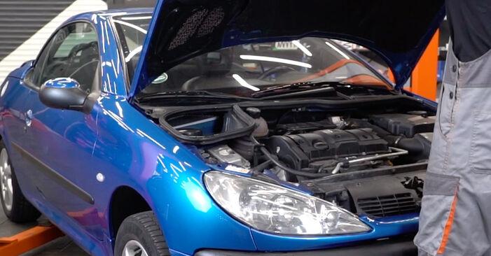 Kaip pakeisti Oro filtras, keleivio vieta la Peugeot 206 cc 2d 1998 - nemokamos PDF ir vaizdo pamokos