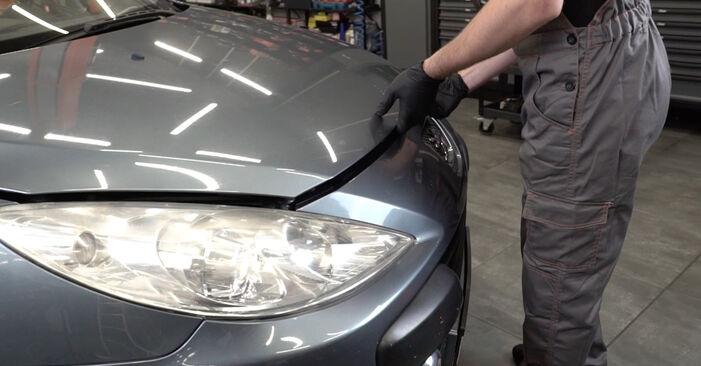 Kaip pakeisti Amortizatorius la Peugeot 307 SW 2000 - nemokamos PDF ir vaizdo pamokos