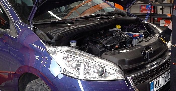 Como trocar Filtro do Habitáculo no Peugeot 208 1 2012 - manuais gratuitos em PDF e vídeo