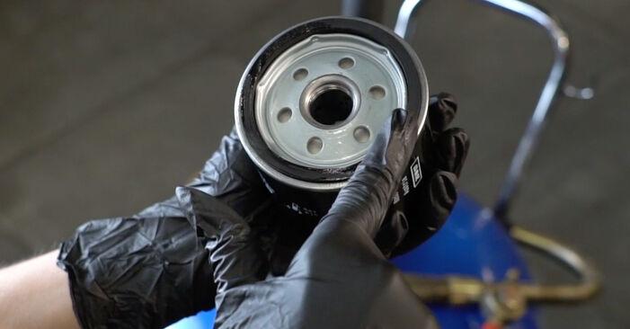 Cómo cambiar Filtro de Aceite en un SEAT Ibiza III Hatchback (6L) 2006 - consejos y trucos