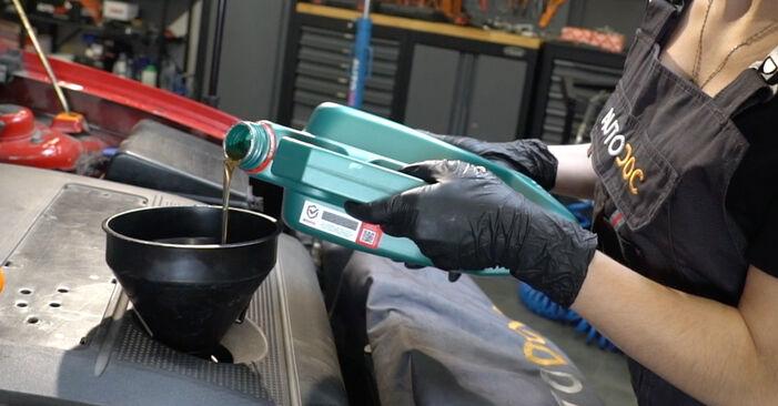 Cómo reemplazar Filtro de Aceite en un SEAT Ibiza III Hatchback (6L) 2007: descargue manuales en PDF e instrucciones en video