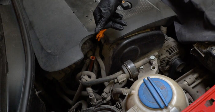 Reemplace Filtro de Aceite en un Seat Ibiza 6l1 2004 1.9 TDI usted mismo