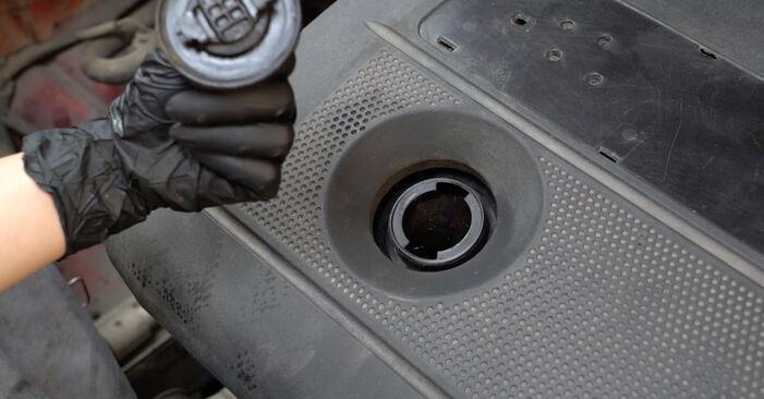 Sustitución de Filtro de Aceite en un Seat Ibiza 6l1 1.4 16V 2004: manuales de taller gratuitos