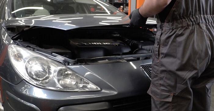Wymiana Filtr oleju Peugeot 307 SW 2000 - darmowe instrukcje PDF i wideo