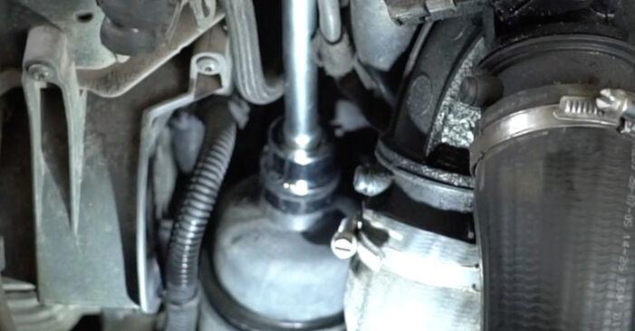 PEUGEOT 307 1.4 16V Filtr oleju wymiana: przewodniki online i samouczki wideo
