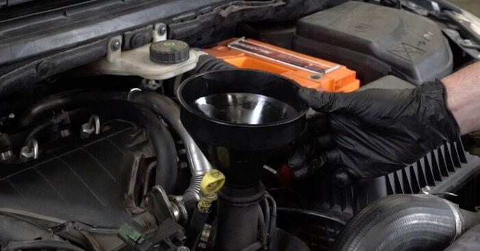 Ölfilter beim PEUGEOT 307 1.6 BioFlex 2007 selber erneuern - DIY-Manual