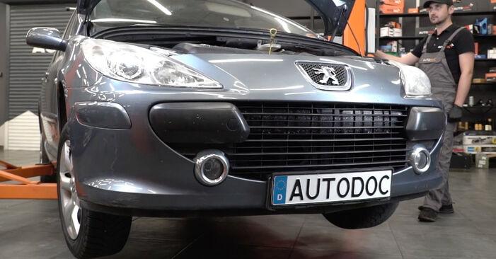 Wymiana Peugeot 307 SW 1.6 16V 2002 Filtr oleju: darmowe instrukcje warsztatowe