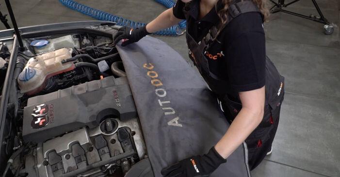 Hoe AUDI A4 Sedan (8EC, B7) 2.0 TDI 16V 2005 Oliefilter vervangen – stapsgewijze handleidingen en videogidsen