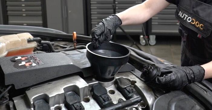 Hoe Oliefilter AUDI A4 Sedan (8EC, B7) 2006 vervangen - advies en uitleg
