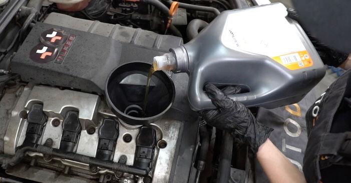 Stapsgewijze aanbevelingen om zelf Audi A4 B7 Sedan 2007 2.0 Oliefilter vervangen