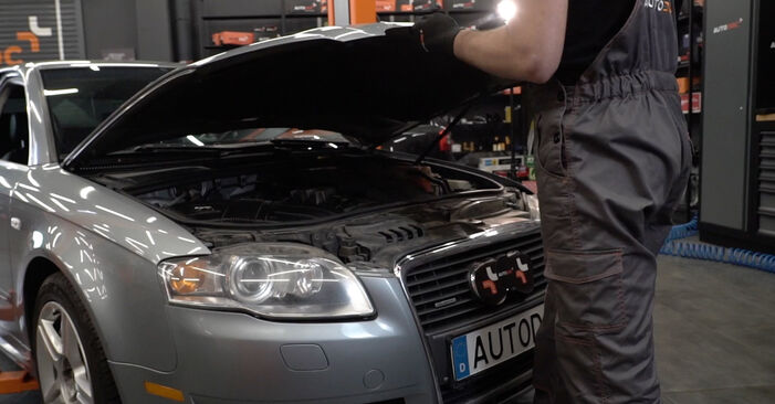 How to change Window Regulator on Audi A4 B7 Saloon 2004 - free PDF and video manuals