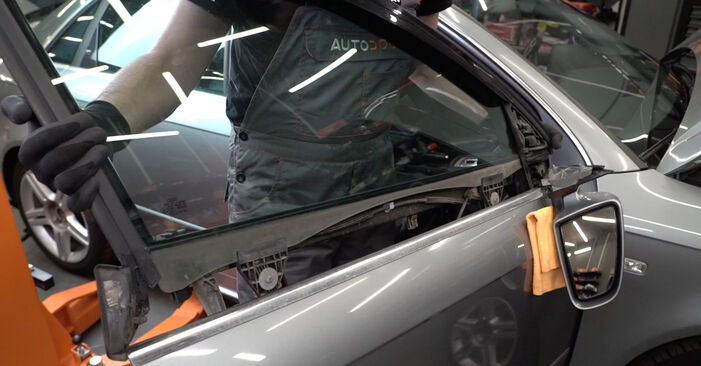 Step-by-step recommendations for DIY replacement Audi A4 B7 Saloon 2007 2.0 Window Regulator
