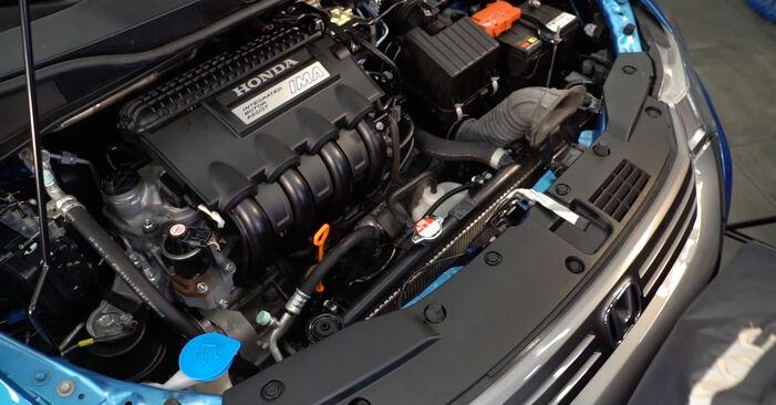 INSIGHT (ZE_) 1.3 Hybrid (ZE2) 2020 1.3 Hybrid (ZE2) Ölfilter - Handbuch zum Wechsel und der Reparatur eigenständig