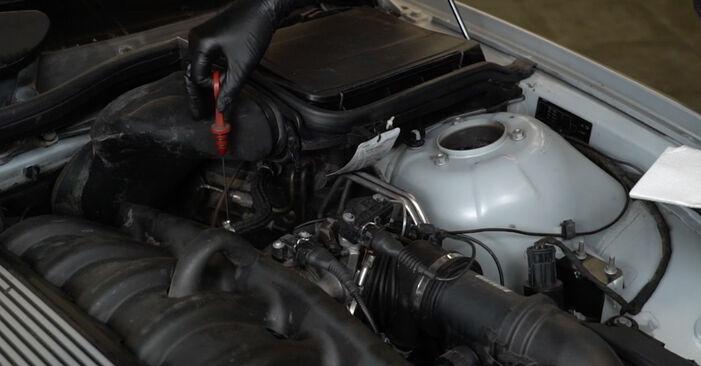 BMW 5 Limousine (E39) 528i 2.8 1995 Ölfilter selbst austauschen - DIY-Anleitung online