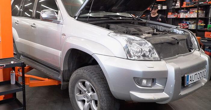 Toyota Prado J120 4.0 2004 Biellette Barra Stabilizzatrice sostituzione: manuali dell'autofficina