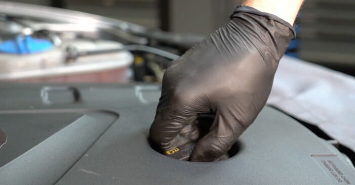 Replacing Oil Filter on Audi A4 B8 Saloon 2008 2.0 TDI by yourself